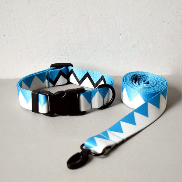 Correa + Collar (M/L/XL) 12