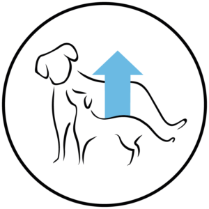 Cachorro Raza Pequeña, Pollo y Arroz - Arion 3