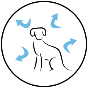 Cachorro Raza Pequeña, Pollo y Arroz - Arion 4
