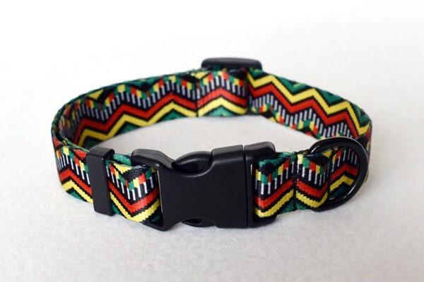 Correa + Collar (M/L/XL) 22