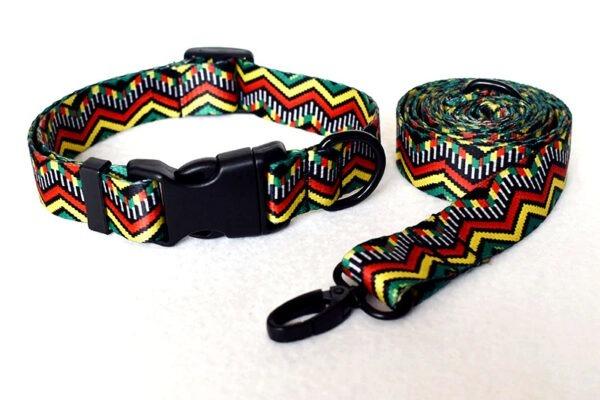 Correa + Collar (M/L/XL) 1