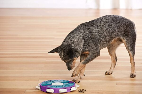 Puzzle Dog Twister, Nina Ottosson 3