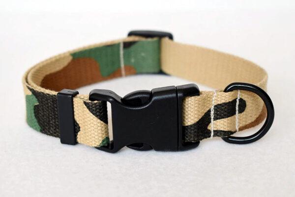 Correa + Collar (M/L/XL) 5
