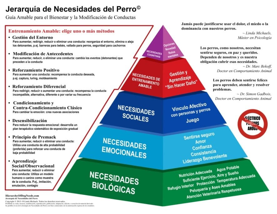 piramide maslow can (1)