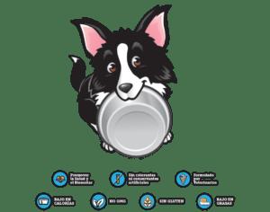 Bebida Isotónica para Perros 500/250 ml, DoggyRade 5