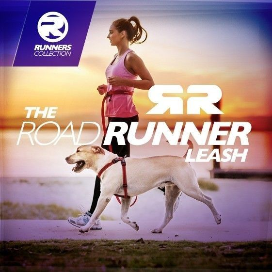 Correa Road Runner EzyDog 6